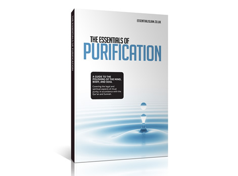 The Essentials of Purification